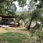 overzicht foto campingplaats